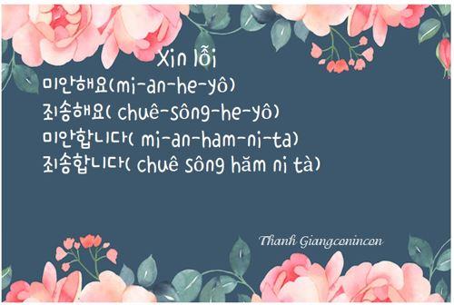 Xin lỗi tiếng Hàn