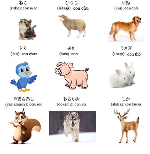 từ vựng tiếng Nhật chủ đề động vật