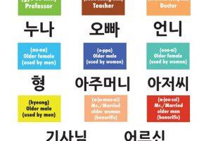 học từ vựng tiếng hàn hiệu quả