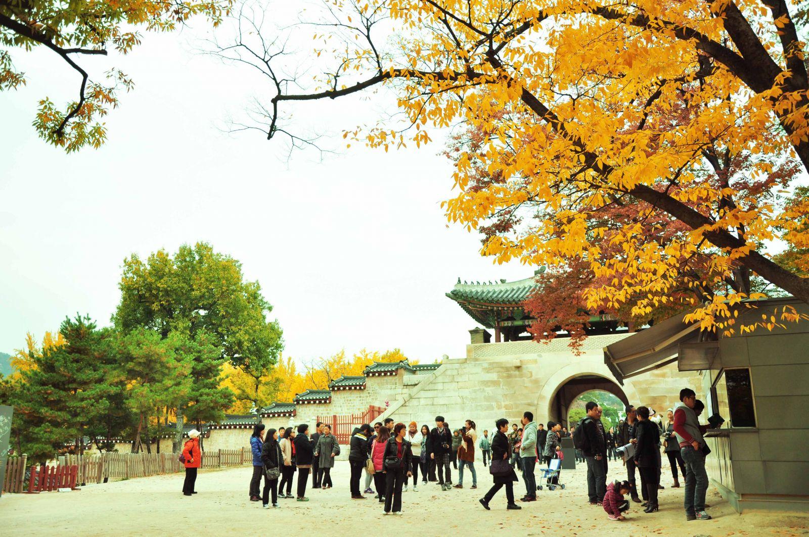 học tiếng Hàn thành công trong tương lai